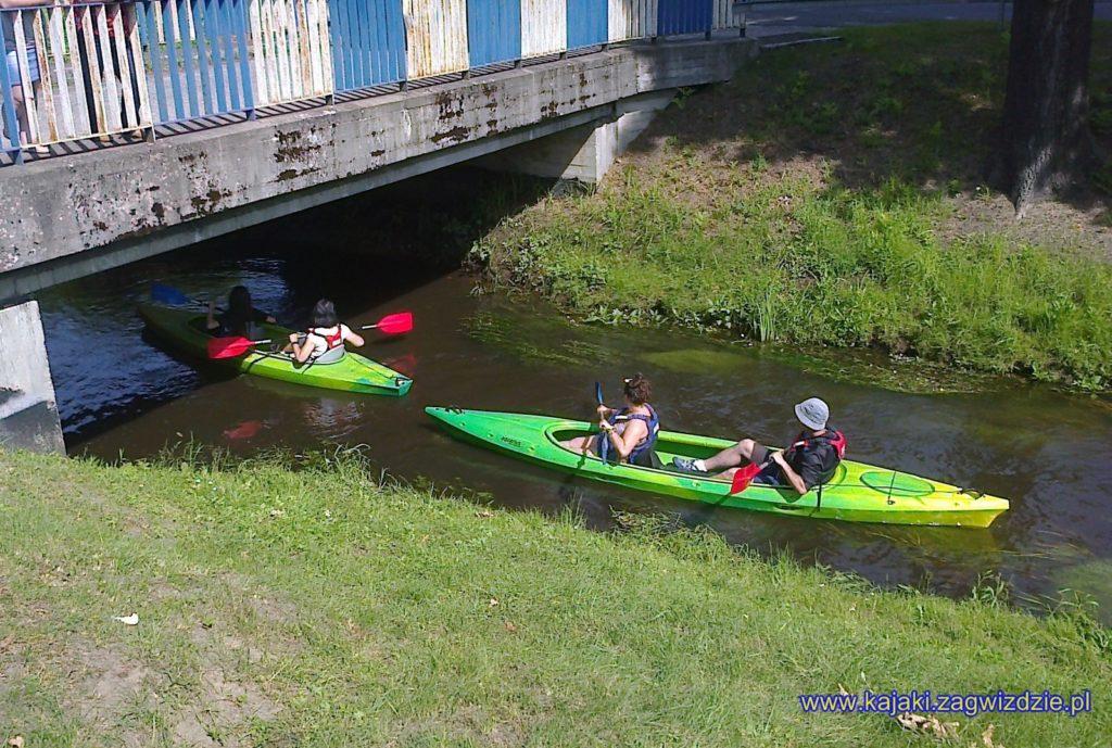 Spływ kajakowy Budkowiczanką www.kajaki.zagwizdzie (14)