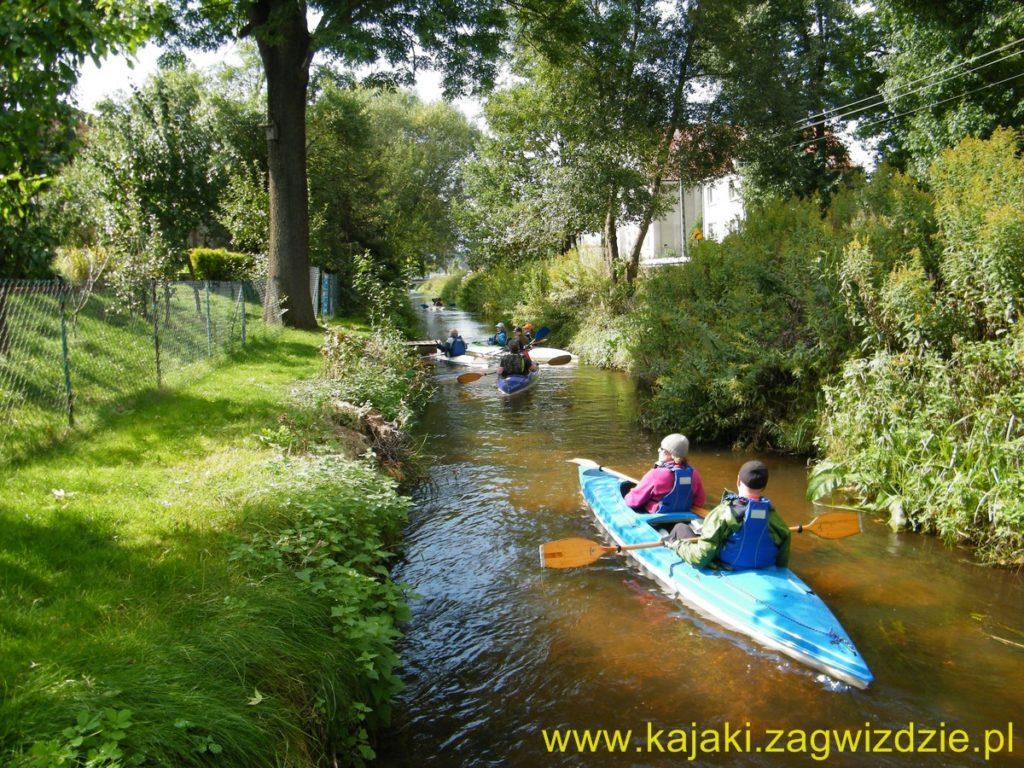 Spływ kajakowy Budkowiczanką www.kajaki.zagwizdzie (4)