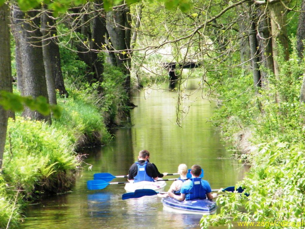 Spływ kajakowy Budkowiczanką www.kajaki.zagwizdzie (8)